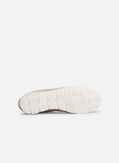 Jlac 462 beige Stuart Elizabeth 373123 Sneaker wHSPAWnq