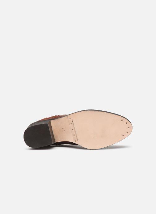 Stiefeletten & Boots P-L-D-M By Palladium Pross braun ansicht von oben