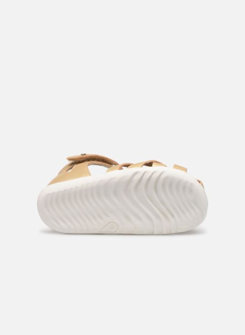 Ballet pumps Bobux Tropicana Bronze and Gold view from above