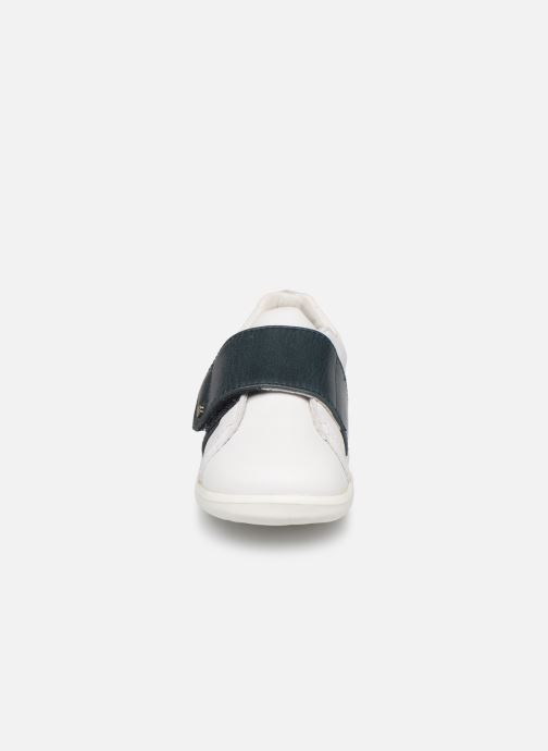 Sneakers Bobux Boston Wit model