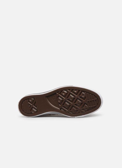 Sneakers Converse Chuck Taylor All Star Seasonal Color Ox W Beige immagine dall'alto