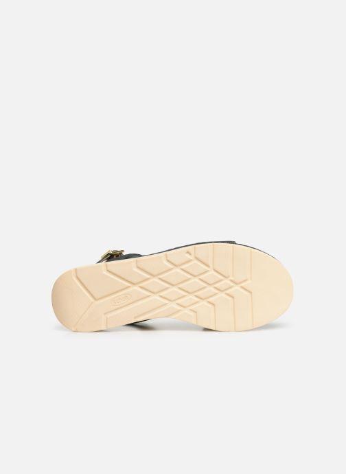 Sandales et nu-pieds Scholl Karissa C Bleu vue haut
