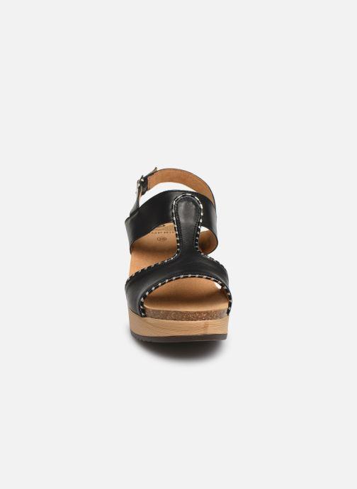 Sandales et nu,pieds Scholl Kassidy C Noir vue portées chaussures