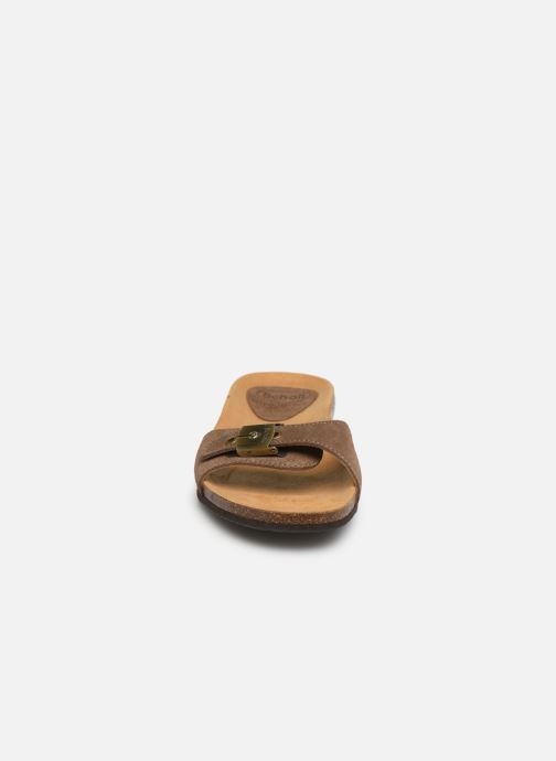 Mules & clogs Scholl Bahama 2.0 C Brown model view