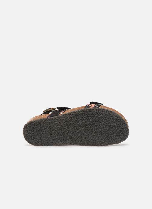 Sandalen Scholl Geeny Sandal C Multicolor boven