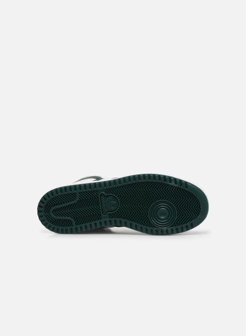 Sneakers adidas originals Top Ten Hi J Wit boven