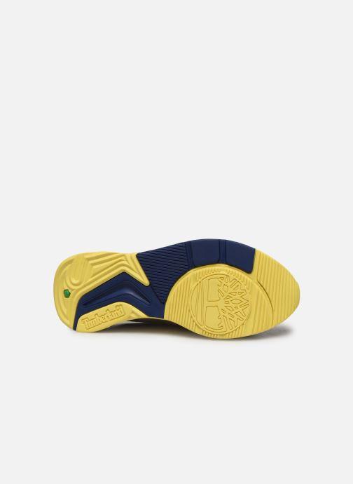 Baskets Timberland Delphiville Leather Sneaker Multicolore vue haut