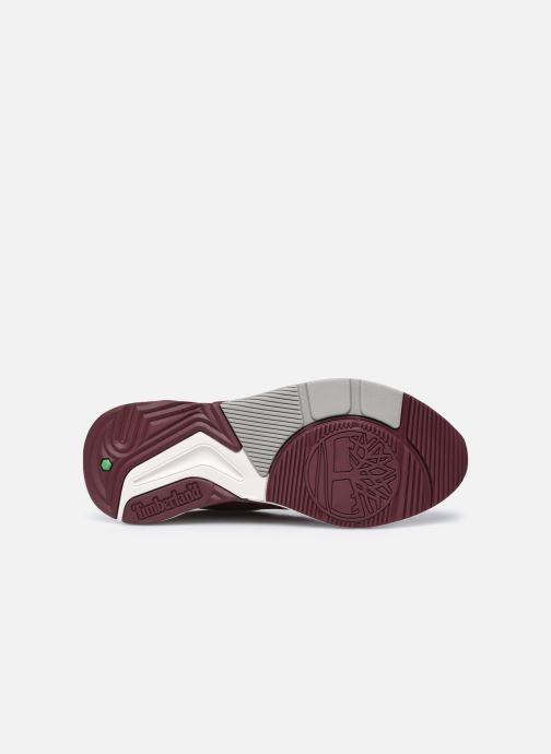 Baskets Timberland Delphiville Leather Sneaker Bordeaux vue haut
