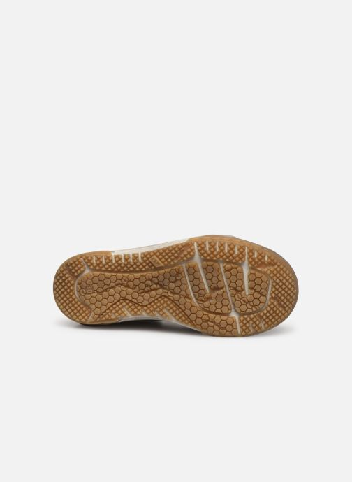 Sneakers Le Loup Blanc Hawai Grijs boven
