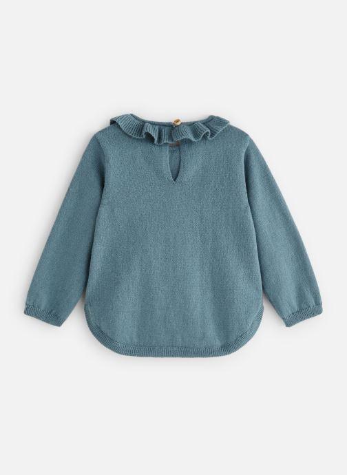 Vêtements Bout'Chou Pull Pomme Multicolore vue bas / vue portée sac