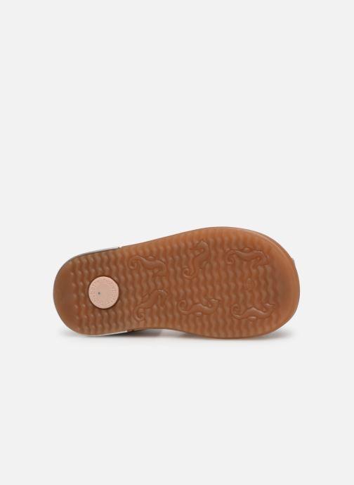 Sandalen Babybotte Tropikanasan x SARENZA Blauw boven