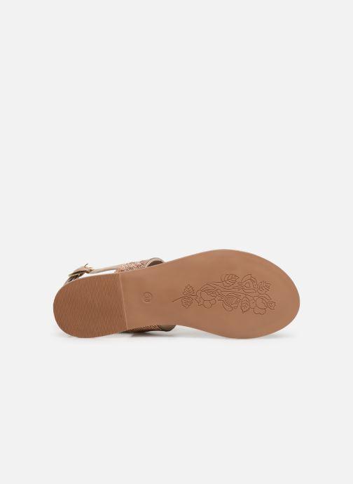 Sandales et nu-pieds Steve Madden Alea Sandal Or et bronze vue haut