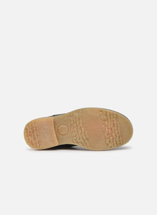 Stiefeletten & Boots Acebo's 5274 blau ansicht von oben