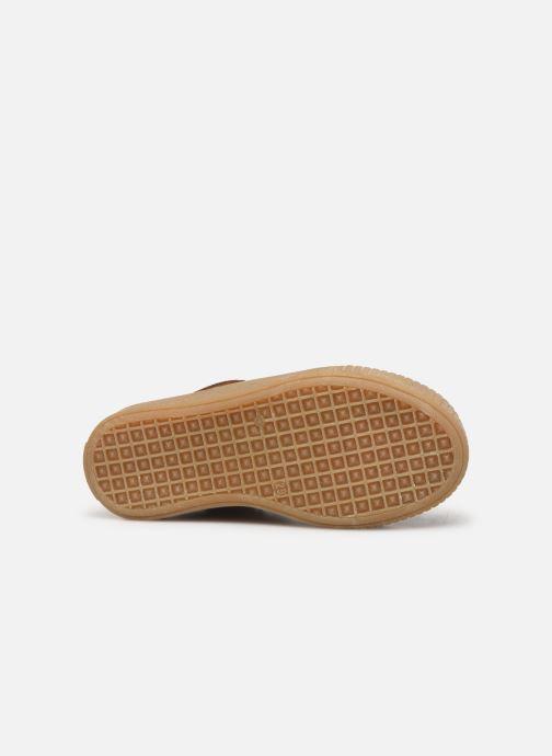 Bottines et boots Acebo's 5290 Marron vue haut
