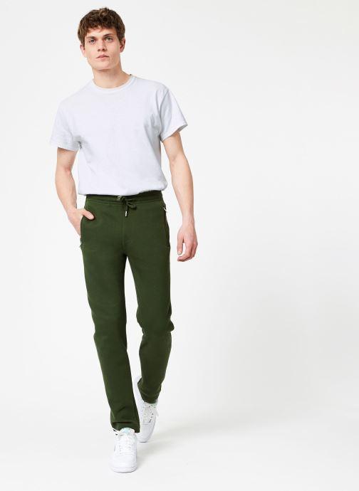 Tøj Compagnie de Californie Stockton Jogpants Grøn se forneden