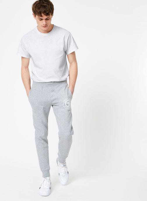 Vêtements Compagnie de Californie Diego Jogpants 2 Gris vue bas / vue portée sac