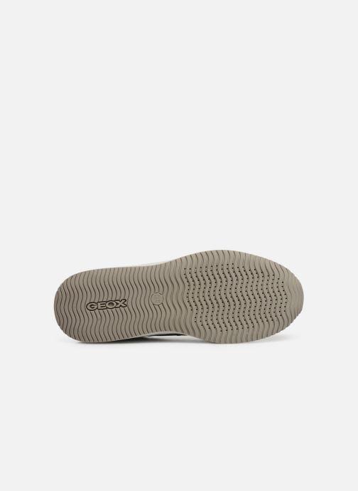 Sneakers Geox U Dennie U620GB Grijs boven