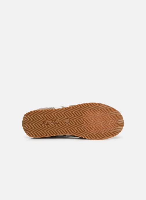 Sneakers Geox U Vinto U742LC Beige bild från ovan