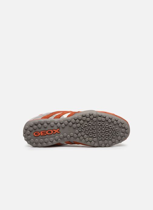 Baskets Geox Uomo Snake U8207E Orange vue haut