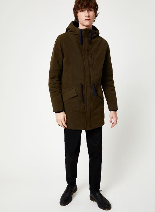 Vêtements Cuisse de Grenouille OUTERWEAR - PARKA Vert vue bas / vue portée sac