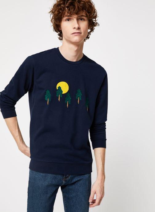 Vêtements Cuisse de Grenouille SWEAT - FIR TREE FOREST Bleu vue détail/paire