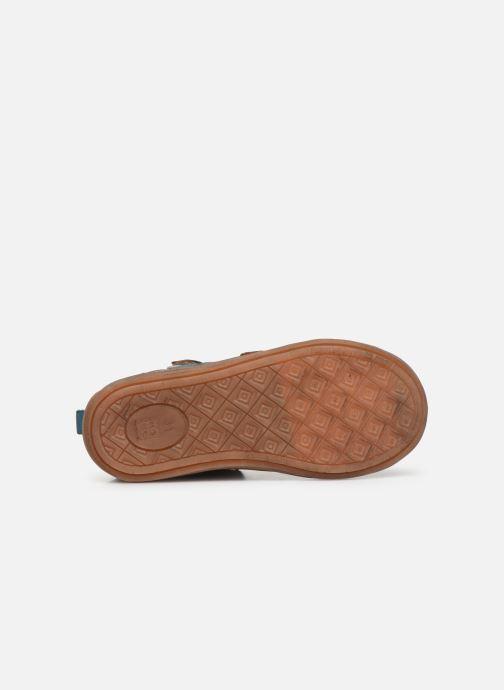 Sneakers Noël Raoul Bruin boven