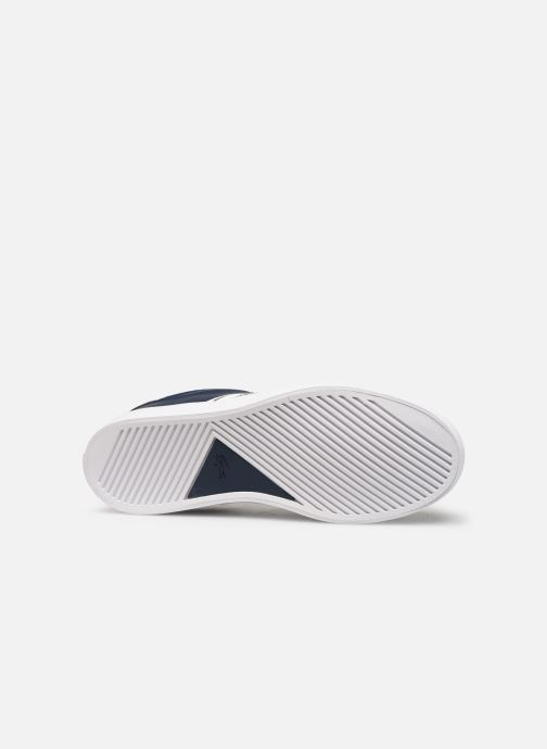Sneaker Lacoste Court-Master 319 1 blau ansicht von oben