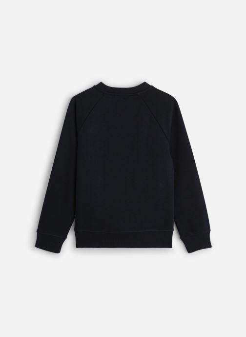 Vêtements Calvin Klein Flag Embroidery Swea Noir vue bas / vue portée sac