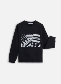 Flag Embroidery Swea