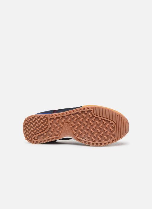 Baskets Pepe jeans Sidney Marron vue haut