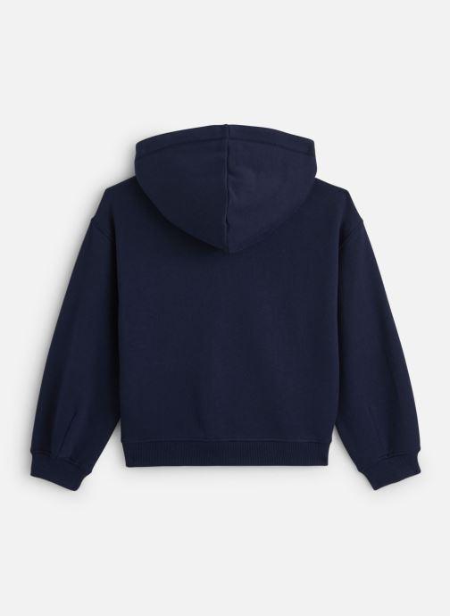 Vêtements Tommy Hilfiger Wide Sleeve Graphic Hoodie Bleu vue bas / vue portée sac