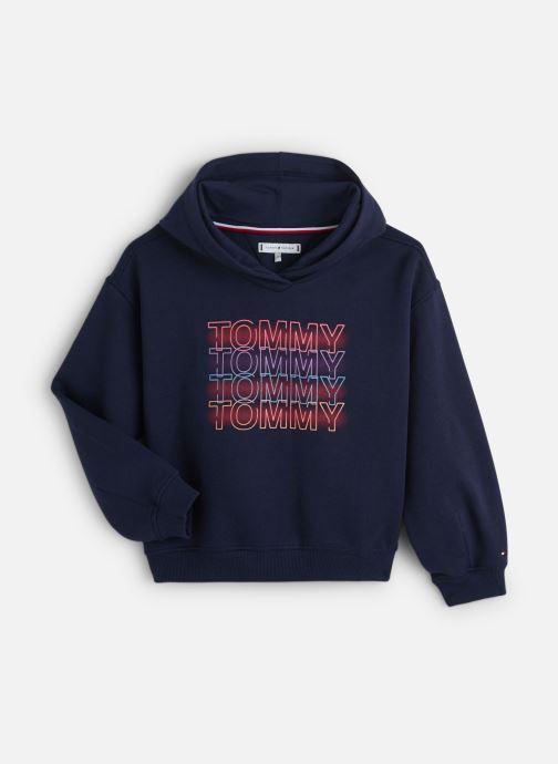 Vêtements Tommy Hilfiger Wide Sleeve Graphic Hoodie Bleu vue détail/paire