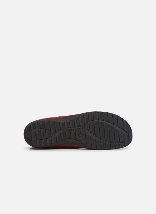 Stiefeletten & Boots Josef Seibel Naly 31 rot ansicht von oben