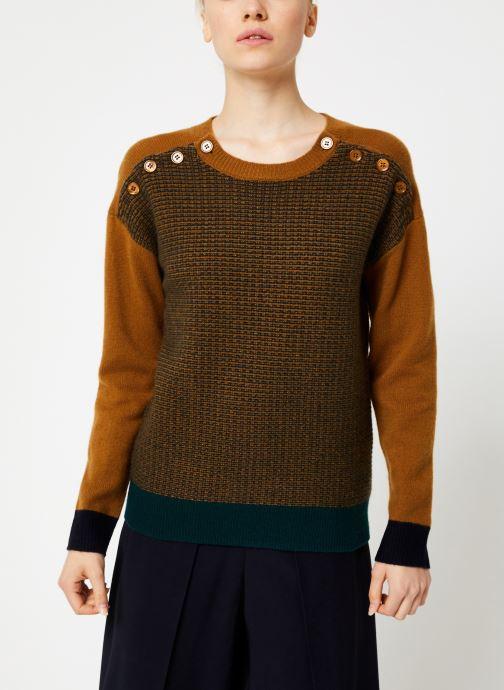 Vêtements Bensimon PULL CLEA Marron vue détail/paire
