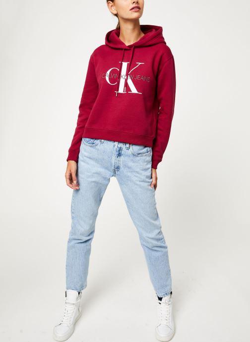 Kleding Calvin Klein Jeans MONOGRAM BOXY HOODIE Bordeaux onder