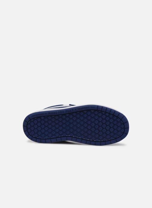 Sneakers Nike Nike Pico 5 (Psv) Azzurro immagine dall'alto