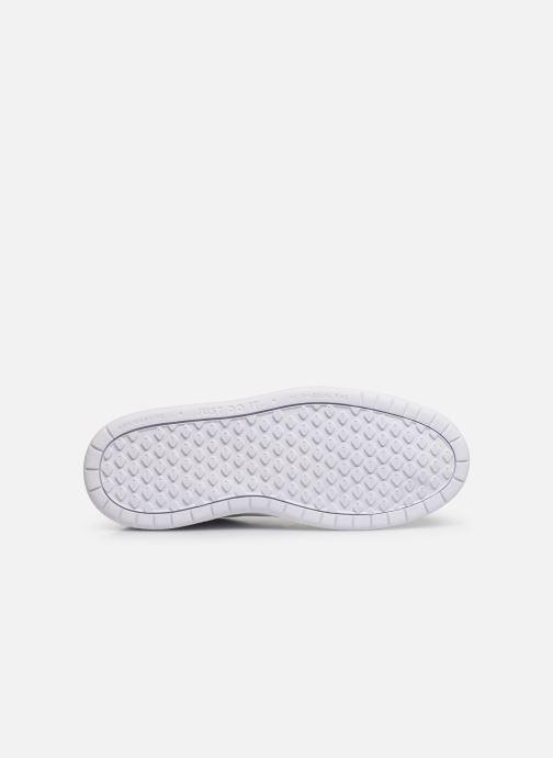 Sneaker Nike Nike Pico 5 (Gs) weiß ansicht von oben