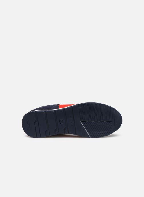 Sneakers Piola CALLAO Azzurro immagine dall'alto