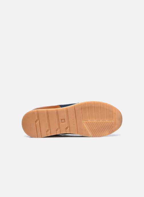 Sneaker Piola CALLAO braun ansicht von oben