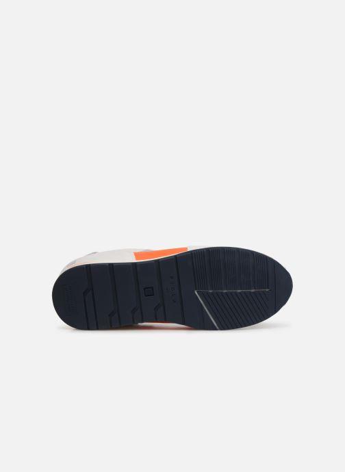 Sneakers Piola CALLAO Bianco immagine dall'alto