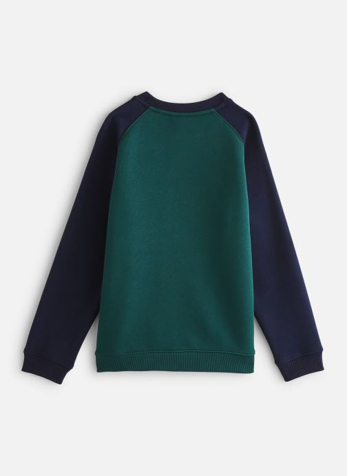 Kleding Lacoste Sweat-shirt enfant Groen onder