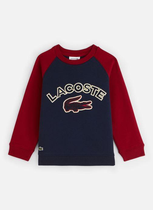 Vêtements Lacoste Sweat-shirt enfant Bleu vue détail/paire