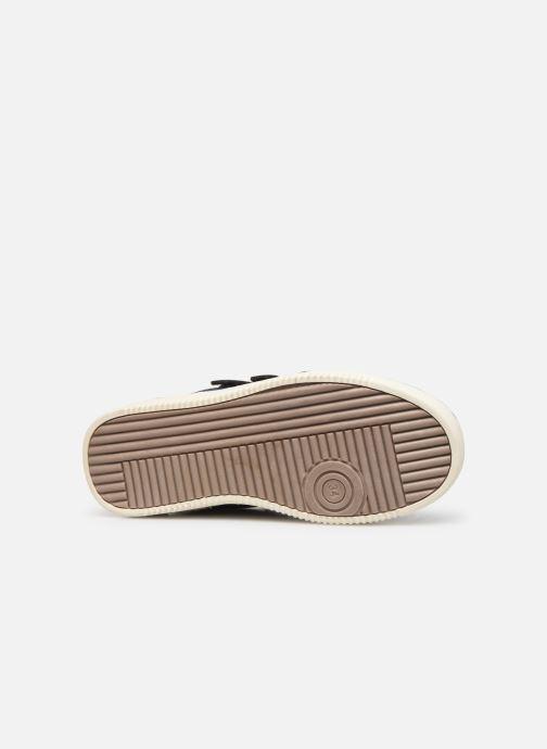 Sneakers Bopy Tanori Sk8 Marrone immagine dall'alto
