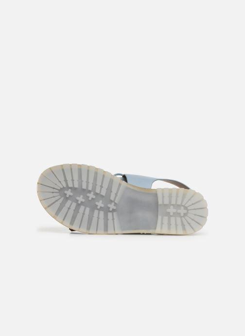 Sandali e scarpe aperte Vanessa Wu SD1255 Azzurro immagine dall'alto