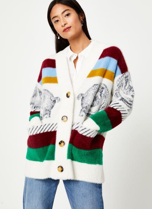 Vêtements Essentiel Antwerp TURF Multicolore vue détail/paire