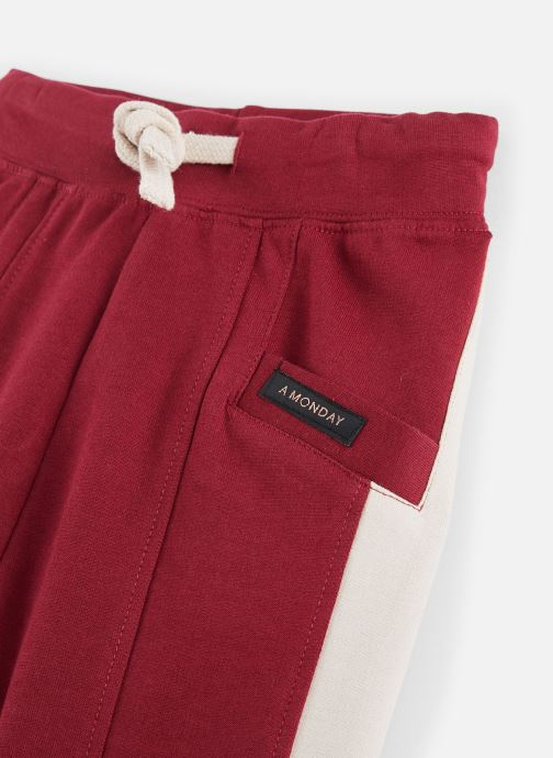 Vêtements A Monday In Copenhagen  Marius Pants Bordeaux vue portées chaussures
