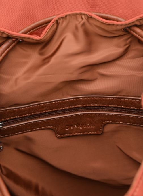 Rucksäcke Desigual RICH CLEMENTINE TRIBECA mehrfarbig ansicht von hinten