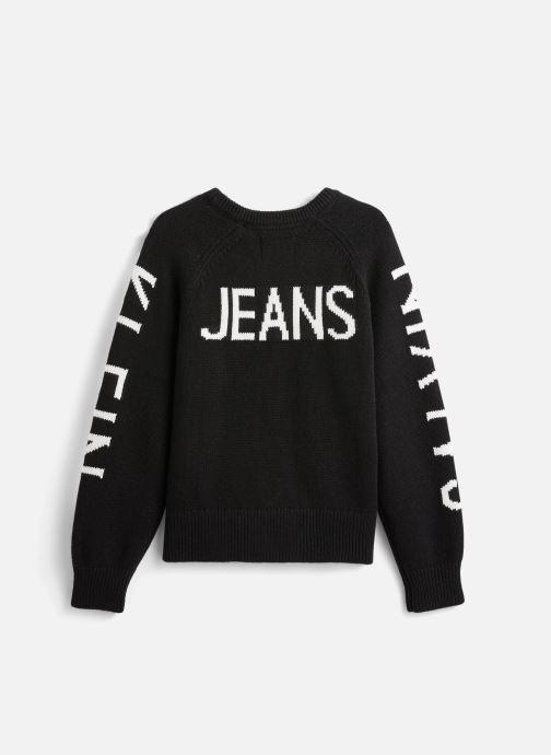 Vêtements Calvin Klein Logo Raglan Noir vue bas / vue portée sac