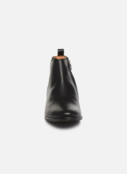 Ankle boots Adolie Odeon Feather Black model view