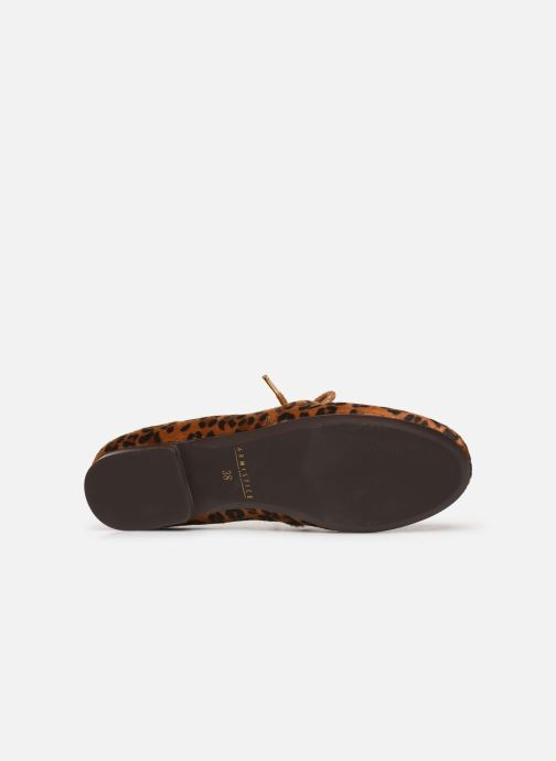 Lace-up shoes Armistice Olympe Derby W Brown view from above